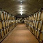 Tour cantine in Toscana