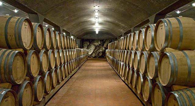 Tour enogastronomico in Toscana fra cantine e vigneti