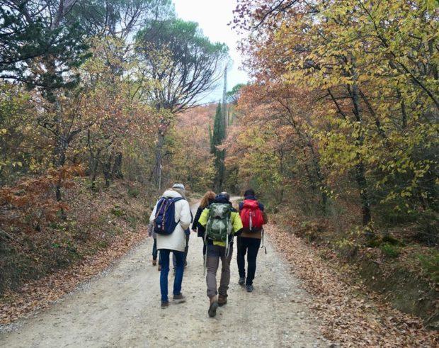 turismo in mugello itinerari nella via degli dei