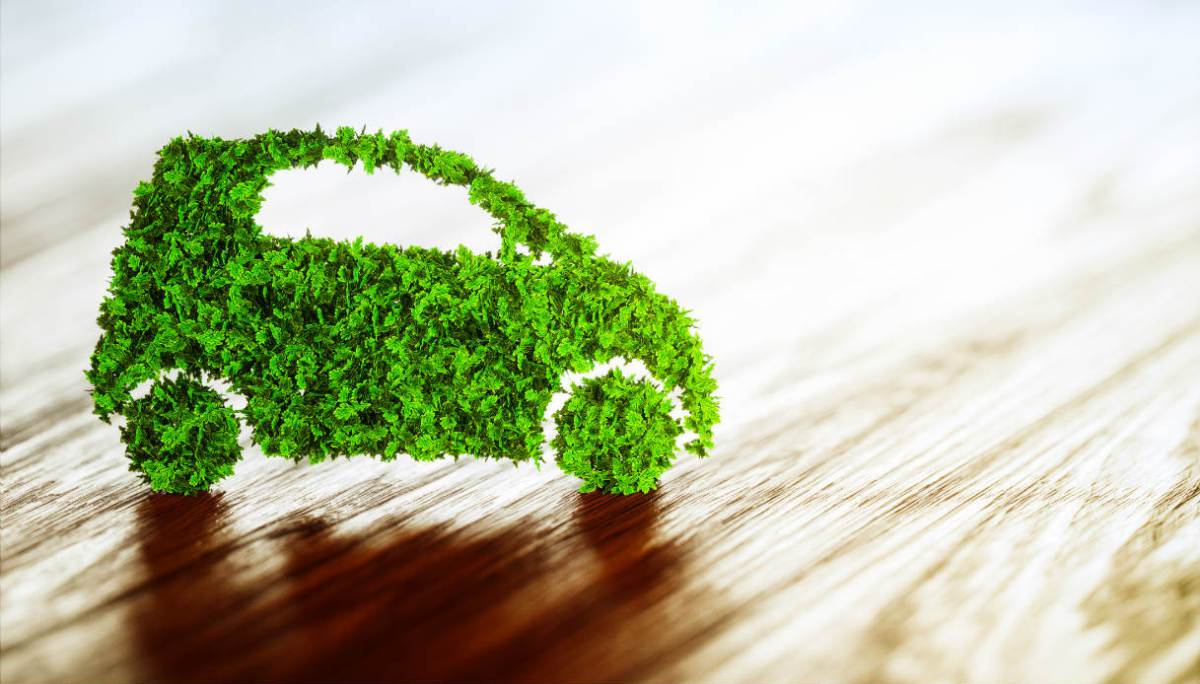 auto usate auto green auto verve