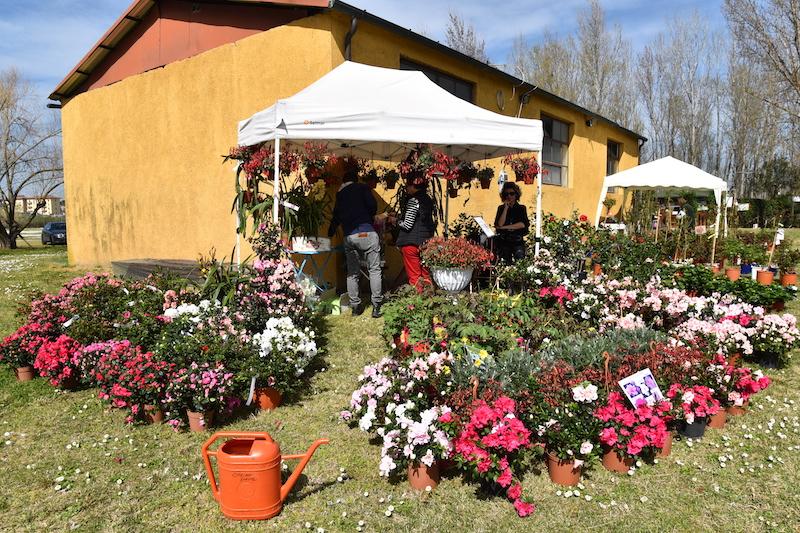 Parco dei Renai: evento in programma il primo maggio 2019