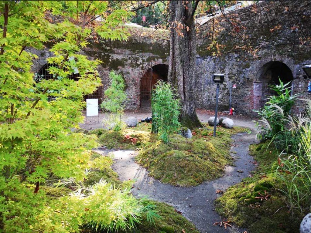 Murabilia conferma la sua vocazione a essere crocevia italiano del giardinaggio internazionale