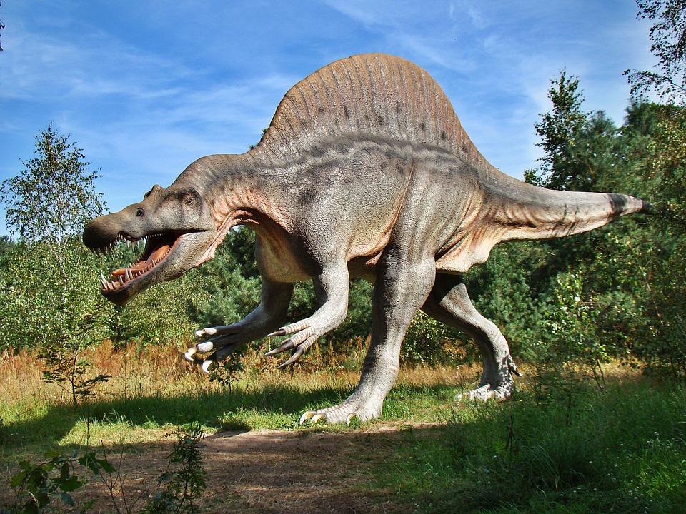 Dinosauri a Novoli
